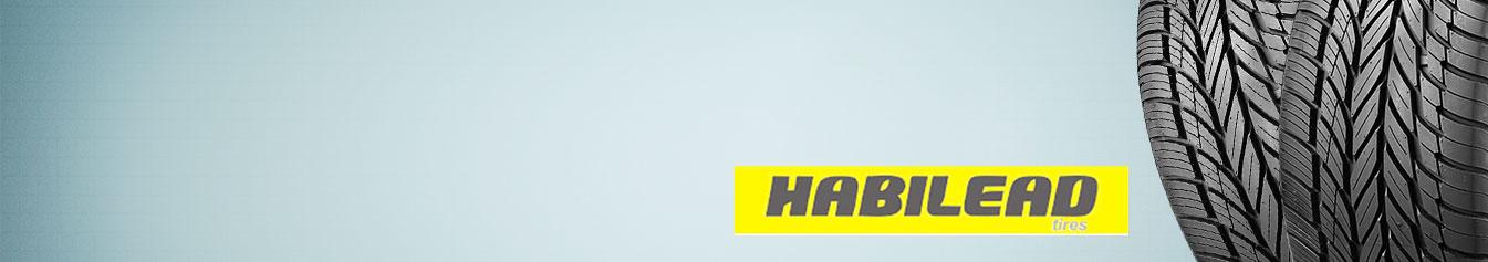 Habilead