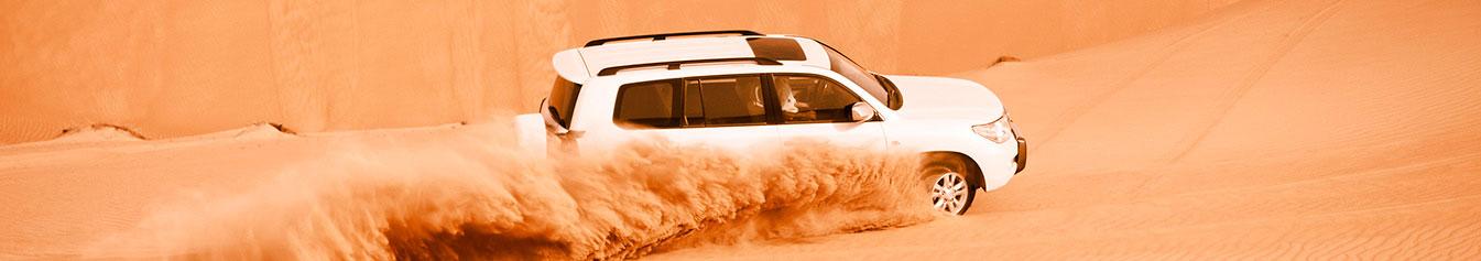 Pneu Pick-Up / SUV / 4x4